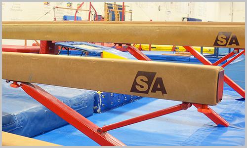 aim gymnastics, pickering athletic centre, taylar gymnastics, pickering, ajax, gymnastics, recreational gymnastics, pac, taylar, athletes in motion, camps, birthday parties, movie nights, whitby, oshawa, scarborough, durham region
